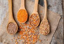 Photo of How do you cook lentils?  |  CookScool.com