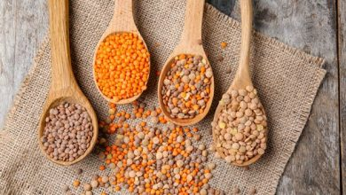Photo of How do you cook lentils?  |  CookScool.com
